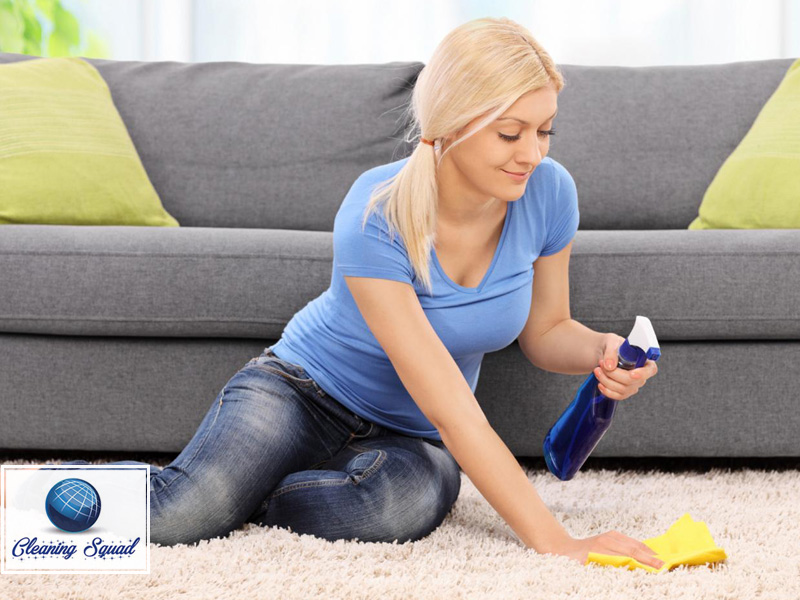 10 Carpet Cleaning Tips Montreal Cleaning Service