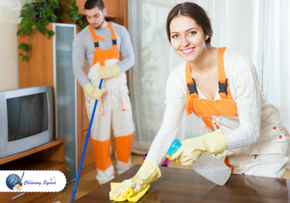 quickly cleaning services